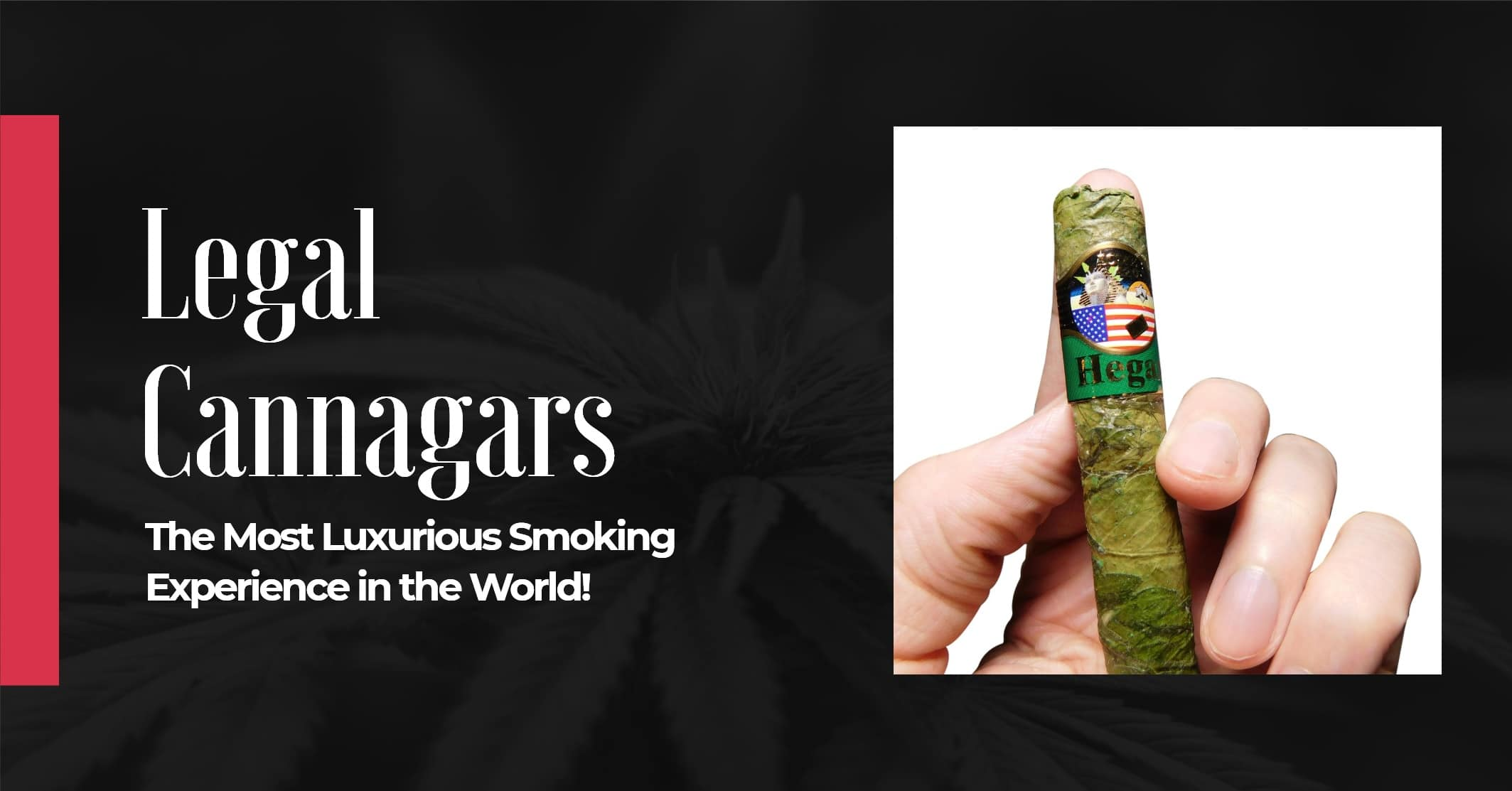 Now you can purchase legal cannagars online image